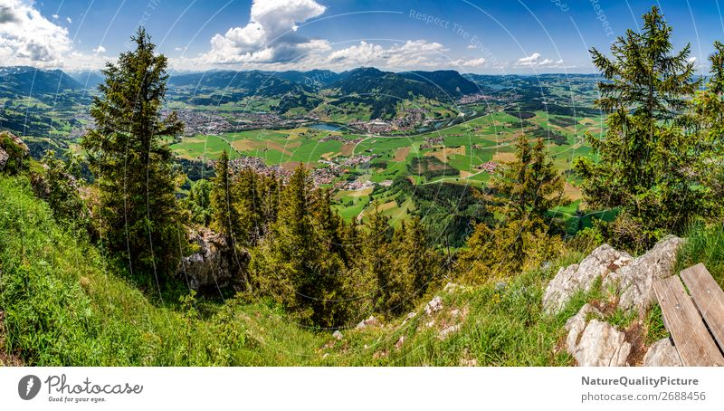 View from Burgberger Hoernle in Burgberg - Allgaeu - Germany Himmel Ferien & Urlaub & Reisen Sommer Landschaft Baum Erholung Wolken ruhig Freude Ferne