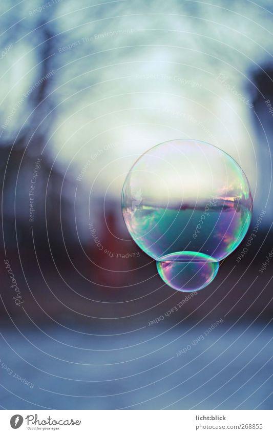 Die Welt in einer Blase Horizont See dünn glänzend Unendlichkeit kalt rund blau Seifenblase zerbrechlich schweben Farbfoto Außenaufnahme Detailaufnahme