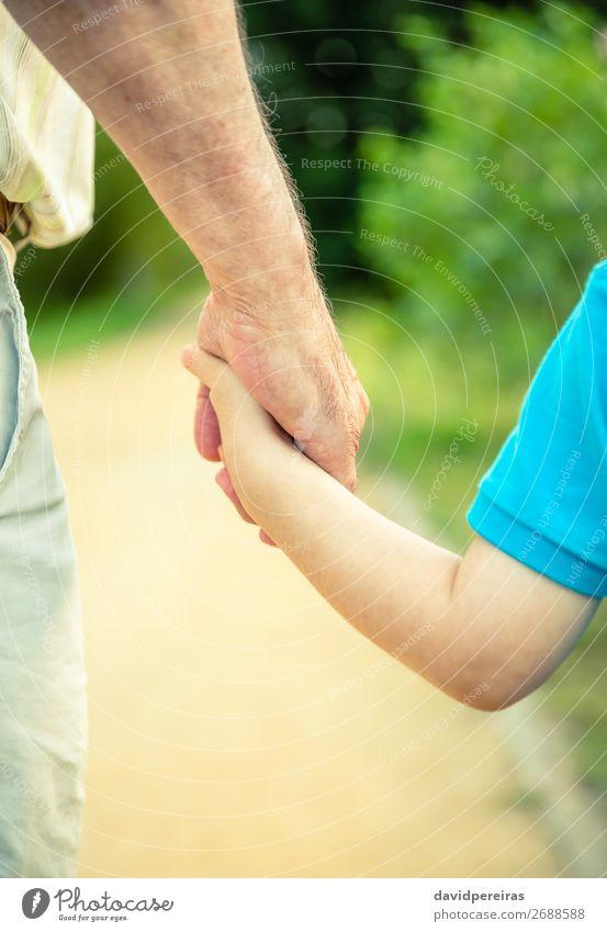 Rückansicht des Kindes und des älteren Mannes, der die Hand hält. Haut Leben Mensch Baby Junge Erwachsene Eltern Vater Großvater Familie & Verwandtschaft Finger