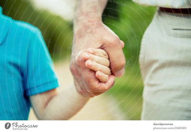 Kind hält die Hand des älteren Menschen in der Natur. Leben Ruhestand Junge Mann Erwachsene Vater Großvater Familie & Verwandtschaft alt Liebe authentisch