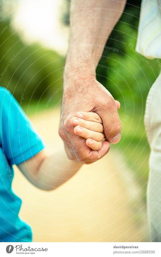 Kind hält die Hand des älteren Menschen in der Natur. Haut Leben Ruhestand Baby Junge Mann Erwachsene Eltern Vater Großvater Familie & Verwandtschaft Finger alt
