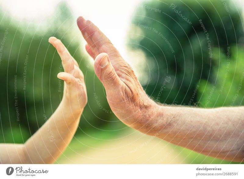 Kinder- und ältere Menschenhände geben fünf in der Natur. Haut Leben Ruhestand Baby Junge Mann Erwachsene Eltern Vater Großvater Familie & Verwandtschaft Hand
