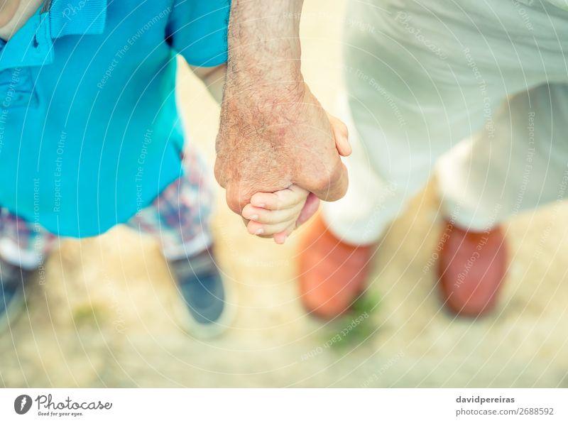 Kind hält die Hand des älteren Menschen in der Natur. Haut Leben Ruhestand Baby Junge Mann Erwachsene Eltern Vater Großvater Familie & Verwandtschaft Finger