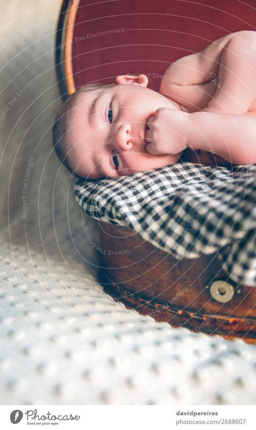 Neugeborenes Baby, das über dem Reisekoffer liegt. Freude schön Körper Haut Gesicht Leben Erholung Ferien & Urlaub & Reisen Kind Mensch Junge Kindheit Koffer