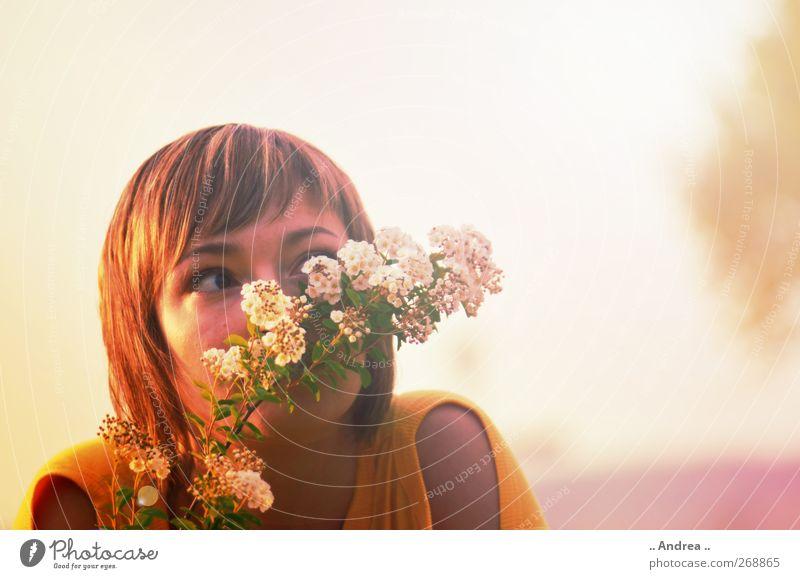 Versteckspiel Mensch Jugendliche schön Sommer Erwachsene Erholung Wiese feminin Park Stimmung 18-30 Jahre beobachten Blühend genießen Sommerurlaub verstecken