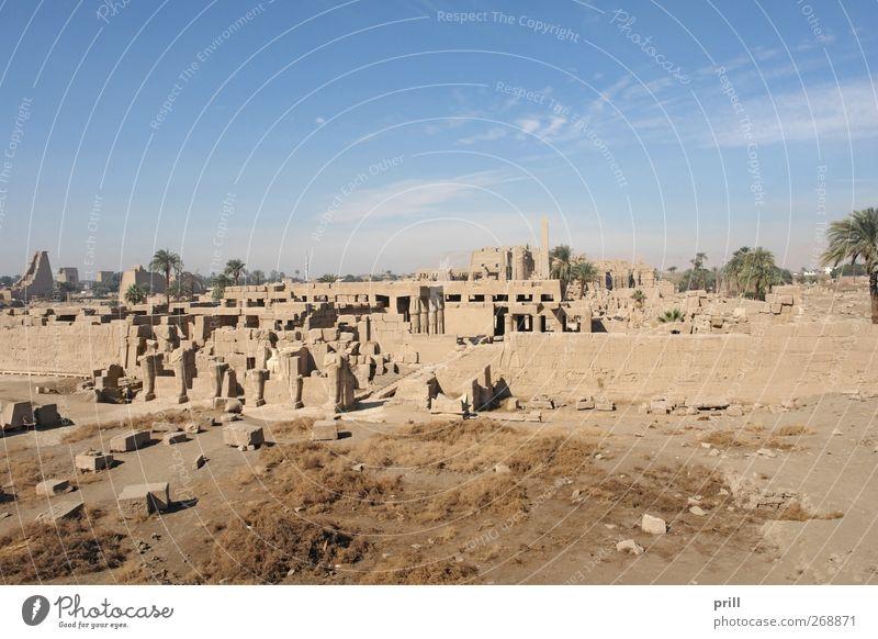 Precinct of Amun-Re in Egypt Tourismus Dekoration & Verzierung Kultur Bauwerk Gebäude Architektur Mauer Wand Sehenswürdigkeit Denkmal Stein alt groß historisch