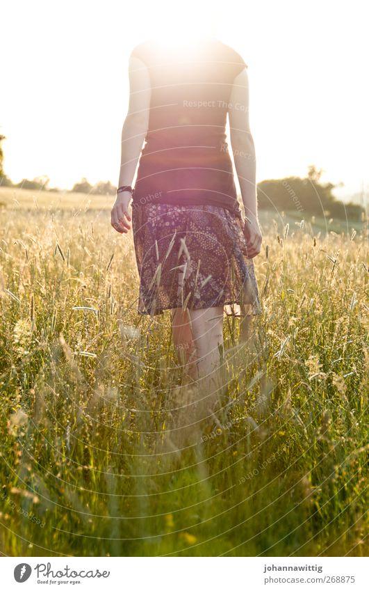 kopflos. Mensch Natur Jugendliche schön Sommer Pflanze Erwachsene feminin Wärme Gefühle Gras Junge Frau hell Körper gehen Feld
