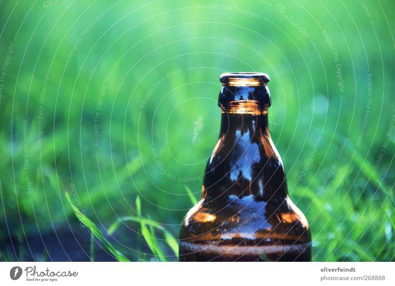 Wochenende III Getränk Bier Flasche Alkohol Wohlgefühl Sommer Feste & Feiern trinken Feierabend Jugendkultur Natur Frühling Gras Glas Erholung frei Fröhlichkeit
