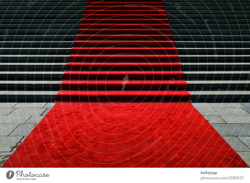 empfangsbestätigung rot Lifestyle Feste & Feiern Treppe elegant Geburtstag Kultur Erfolg Hochzeit planen Theaterschauspiel Museum aufwärts Kino Politik & Staat