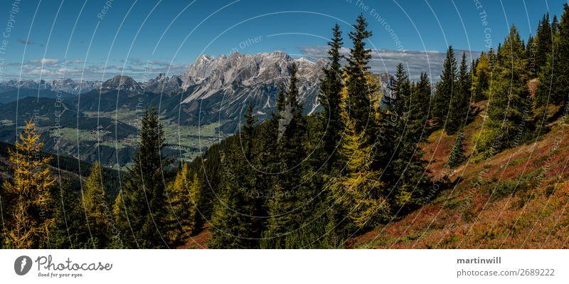 Dachstein von Gegenüber Leben Ferien & Urlaub & Reisen Tourismus Ausflug Ferne Freiheit Berge u. Gebirge wandern Natur Landschaft Herbst Wald Felsen Alpen