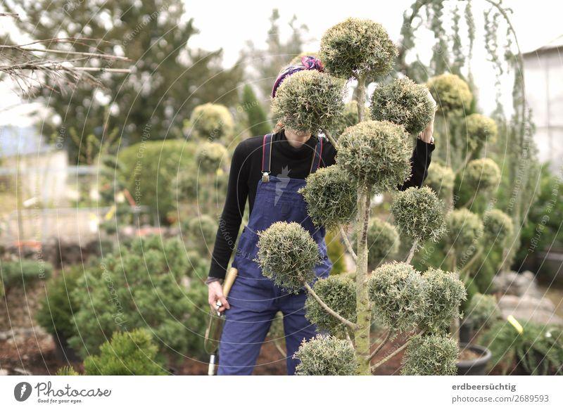 Schlechtes Versteck Freiheit Gartenarbeit Handwerk feminin Körper 1 Mensch Pflanze Baum Sträucher Grünpflanze Arbeitsanzug Wachstum frisch blau grün
