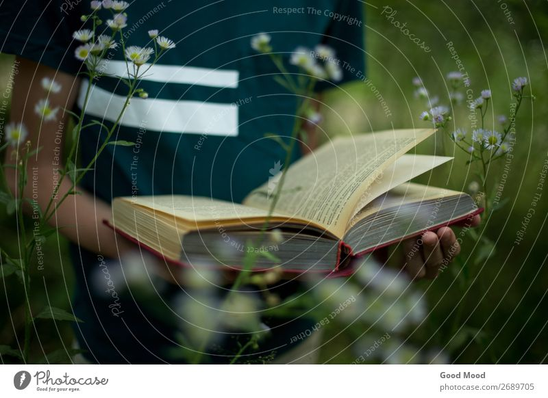 Teenager hält ein Buch in seinen Händen in der Natur. Lifestyle schön Erholung Freizeit & Hobby lesen Ferien & Urlaub & Reisen Sommer wandern Garten Schule