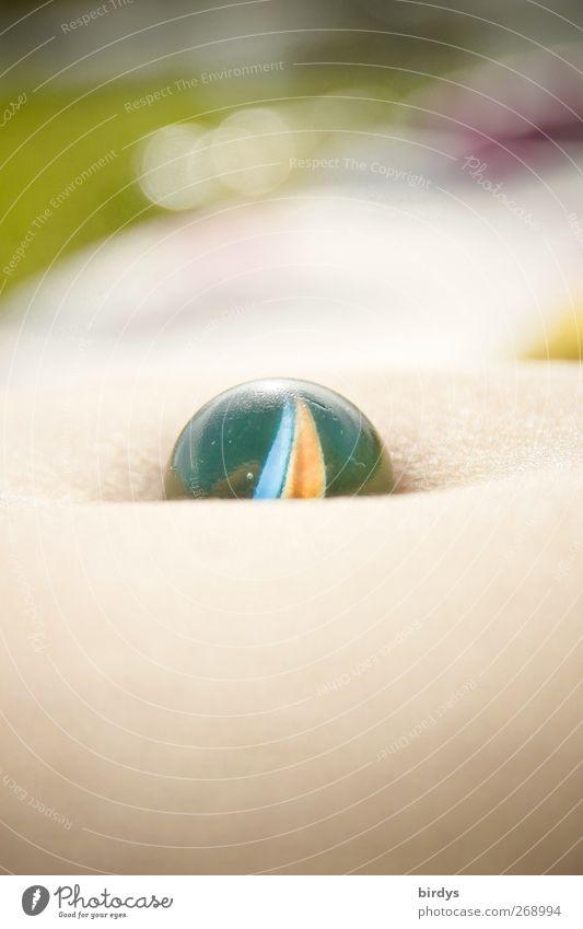 Bauchnabel-Murmeling Mensch schön Erholung Glas Freizeit & Hobby außergewöhnlich liegen Haut ästhetisch leuchten Warmherzigkeit rund einzigartig Freundlichkeit Kugel Sonnenbad