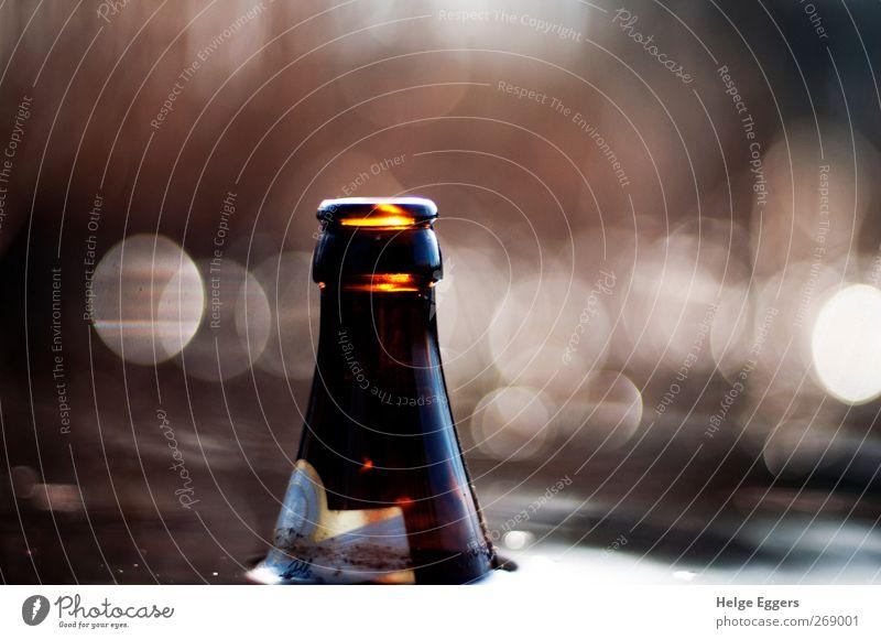 cool down rot Freude Erholung braun Freizeit & Hobby Bier Sinnbild