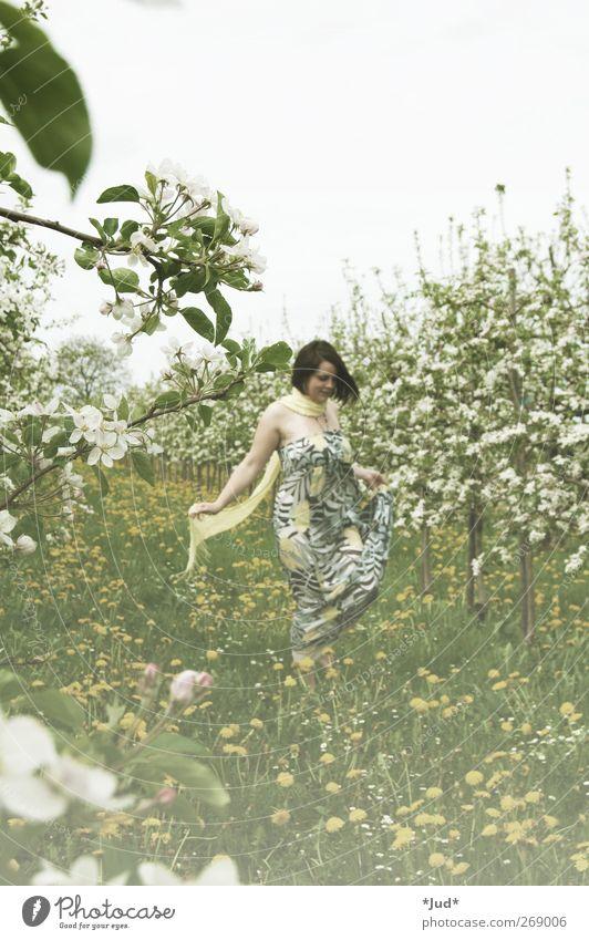Blütenstaub Frau Erwachsene Leben 1 Mensch Natur Pflanze Frühling Schönes Wetter Wiese Feld Kleid Blühend Duft genießen Lächeln träumen Wachstum ästhetisch frei