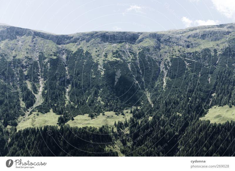 Höher als es aussieht Himmel Natur Ferien & Urlaub & Reisen Sommer ruhig Wald Erholung Ferne Umwelt Landschaft Leben Berge u. Gebirge Wege & Pfade Freiheit