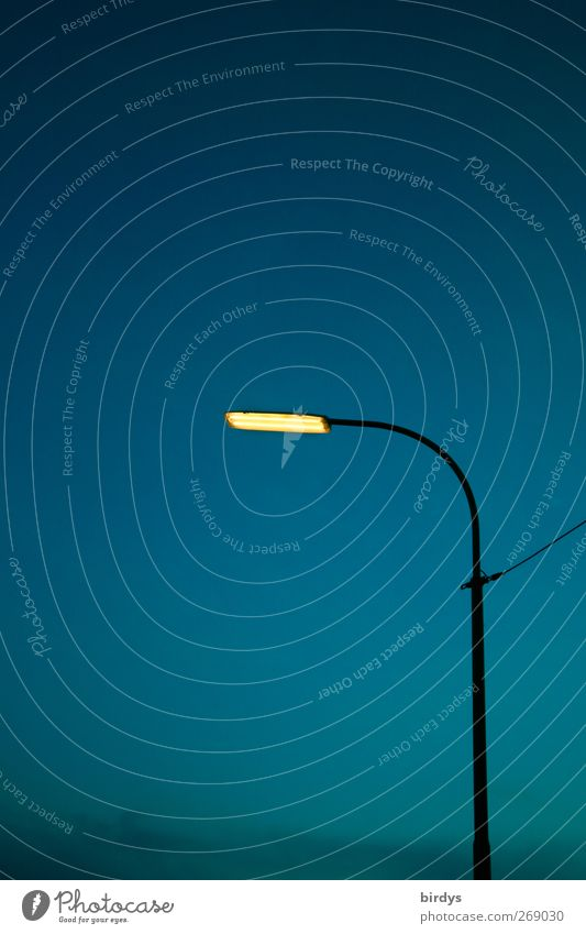 Erhellend Straßenbeleuchtung leuchten authentisch blau gelb Energie Stadt Licht gekrümmt 1 Kabel Nachthimmel Lampe erleuchten Farbfoto Außenaufnahme