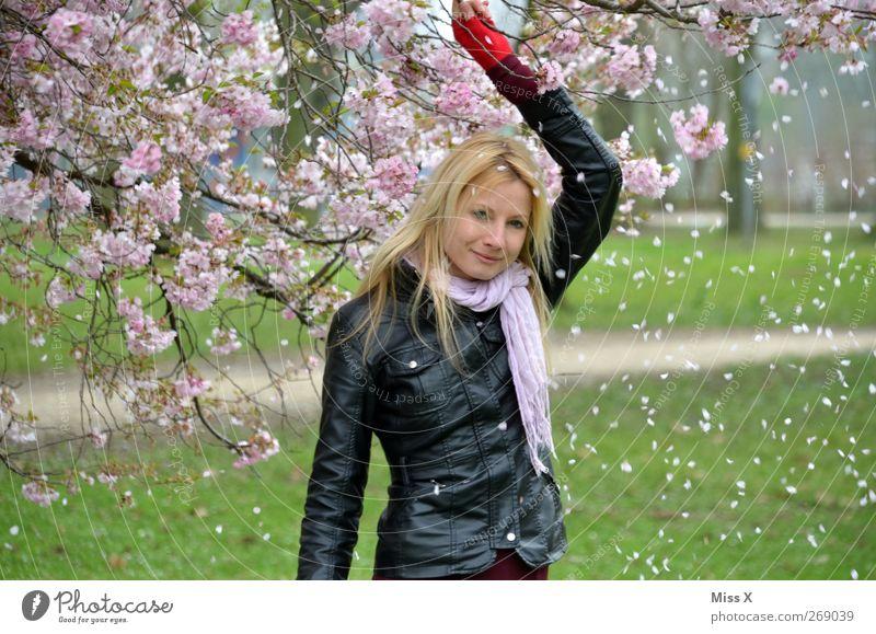 Rosa Regen Mensch feminin Frau Erwachsene 1 18-30 Jahre Jugendliche Natur Pflanze Frühling Baum Blüte Garten Park blond schön Kirschblüten rosa Farbfoto