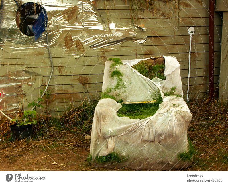 Sesselgras unter Aufsicht Natur Auge Wiese Gras Kunst dreckig verfallen obskur Gardine Musikfestival Straßenkunst Folie Fusion Spiralkabel