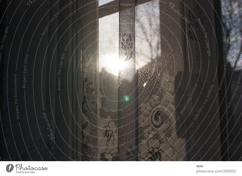 bei oma [02] Häusliches Leben Wohnung Haus Innenarchitektur Dekoration & Verzierung Gardine Vorhang beobachten alt dunkel weiß Geborgenheit Ordnungsliebe