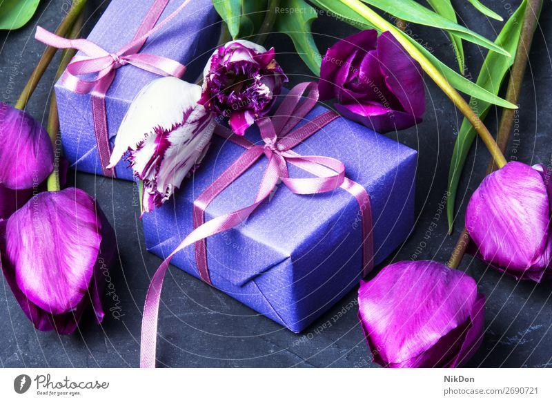 Geschenk und Tulpe Kasten Blume Frühling Tag Blumenstrauß Valentinsgruß Liebe rosa Feiertag romantisch schön Mutter präsentieren Gruß Geburtstag Jahrestag