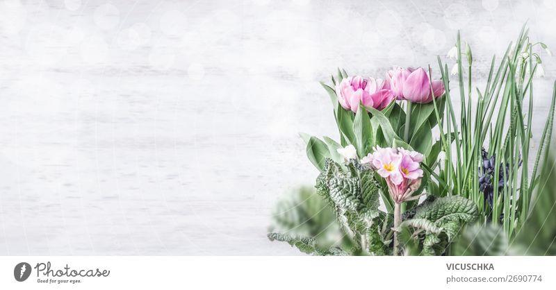 Frühling Blumen Hintergrund Stil Design Garten Natur Pflanze Tulpe Blatt Blüte Mauer Wand Dekoration & Verzierung Blumenstrauß rosa Hintergrundbild