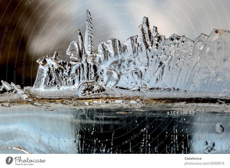 Junk   eine Armee aus Eis Urelemente Winter Frost Strukturen & Formen Eiskristall ästhetisch kalt blau braun silber türkis Stimmung gefroren Design Natur Umwelt