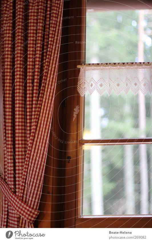 Baumhaus Natur Ferien & Urlaub & Reisen weiß Baum Erholung rot Haus Innenarchitektur Holz braun Stimmung Raum wandern Ausflug Vorhang kariert