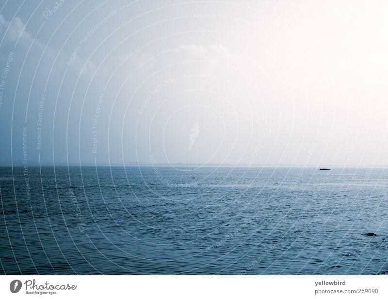 Die Ostsee Natur Landschaft Urelemente Wasser Horizont Frühling Schönes Wetter Seeufer Strand blau Glück geduldig ruhig Zufriedenheit Farbfoto Außenaufnahme Tag