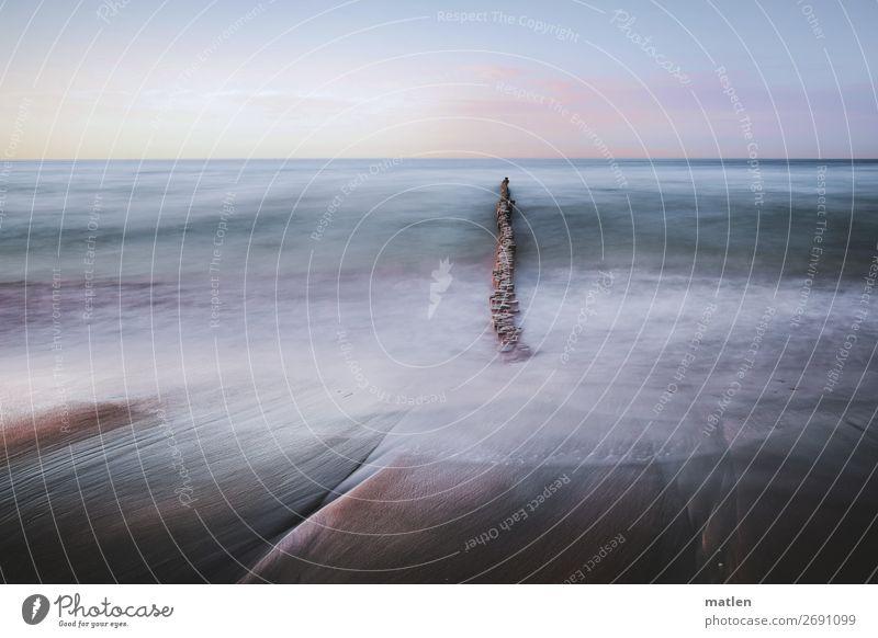 Strand Himmel Sommer blau grün Wasser Küste braun rosa Sand Wellen Luft Schönes Wetter Ostsee Wolkenloser Himmel Brandung