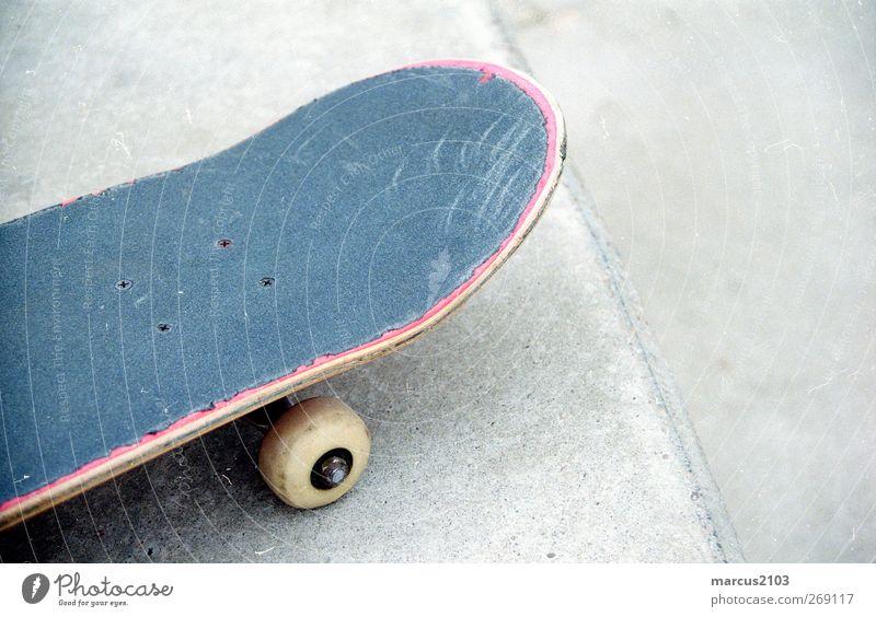 mit dem Brett im Park. Freude Sport Freiheit Freizeit & Hobby Abenteuer Lifestyle Coolness fahren Skateboarding Skateboard Stadtzentrum Spielplatz Sportstätten