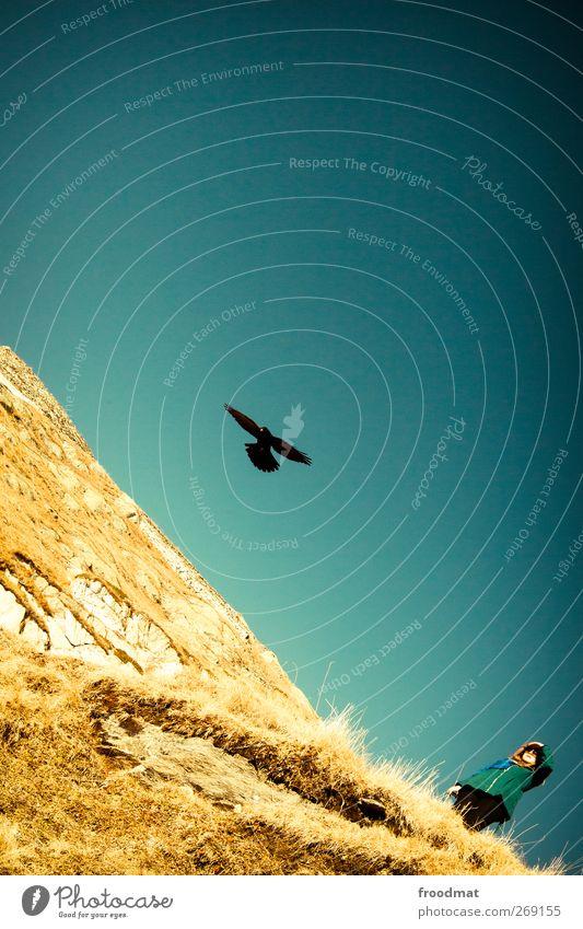 Fernweh Mensch Frau Himmel Natur Jugendliche blau Sonne Tier ruhig Erwachsene Umwelt Landschaft feminin Berge u. Gebirge Herbst träumen