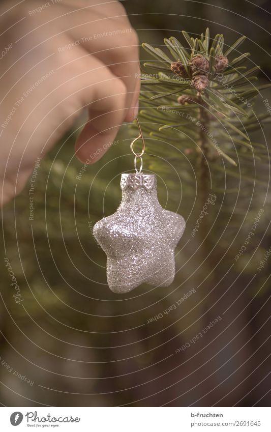 Weihnachtsstern Stil Häusliches Leben Feste & Feiern Weihnachten & Advent Silvester u. Neujahr Hand Finger Baum Dekoration & Verzierung Kitsch Krimskrams wählen