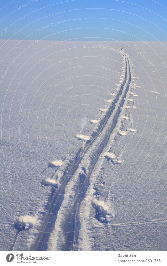 Skispur im Schnee Winter Winterurlaub Sport Fitness Sport-Training Wintersport Skifahren Natur Landschaft Himmel Bewegung genießen Unendlichkeit blau weiß