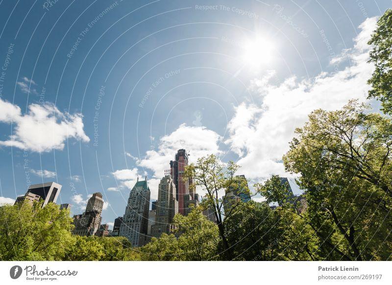 On a sunny day Himmel Natur Ferien & Urlaub & Reisen Stadt Pflanze Sonne Haus Umwelt Landschaft Architektur Frühling Freiheit Gebäude Luft Park Wetter