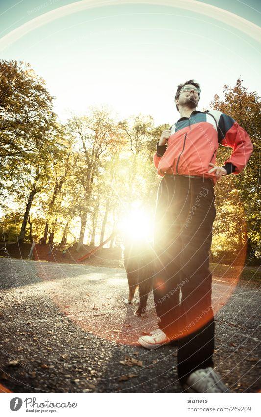 Berner Sonnenhund Hund Mann Erwachsene Leben Herbst hell gehen Freizeit & Hobby maskulin stehen Lifestyle Sicherheit Macht rund Spaziergang