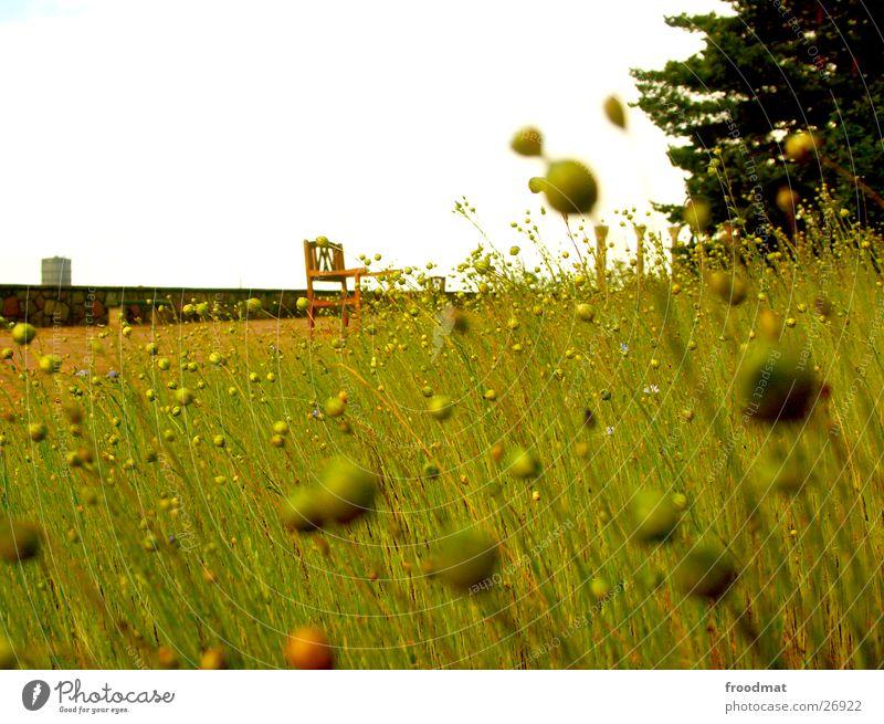 Millesgården #2 Himmel Baum Zufriedenheit Stuhl Schweden Unschärfe