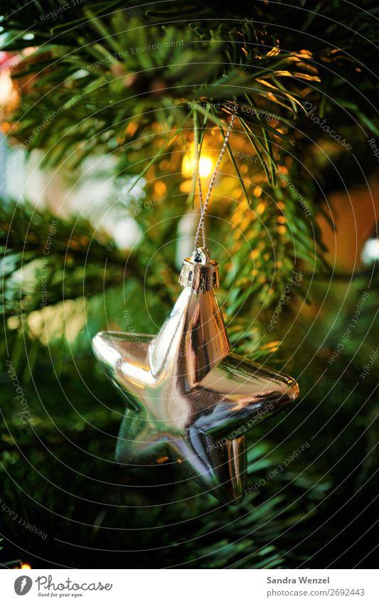 Stern Feste & Feiern Weihnachten & Advent Kultur Winter Baum Tanne Glas Metall glänzend Vorfreude Begeisterung Tradition Baumschmuck Stern (Symbol) silber