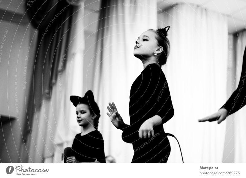 Katze Mensch Kind Jugendliche Hand Mädchen Freude feminin Gefühle Bewegung Kopf Kunst Körper Tanzen Kindheit Freizeit & Hobby