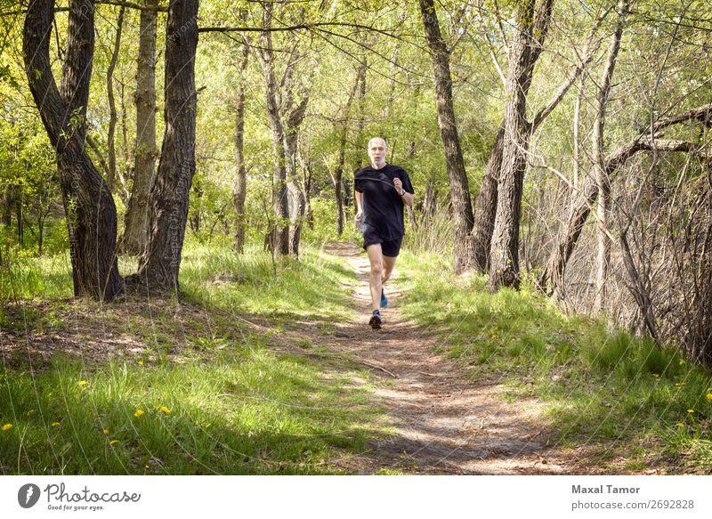 Senior Mann beim Laufen im Wald Lifestyle Glück Freizeit & Hobby Sommer Sport Joggen Mensch Erwachsene Natur Park alt Fitness schwarz 60s Aktion Kaukasier üben