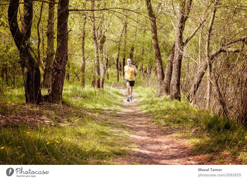 Senior Mann beim Laufen im Wald Lifestyle Glück Freizeit & Hobby Sommer Sport Joggen Mensch Erwachsene Natur Baum Park alt Fitness gelb 60s Aktion Kaukasier
