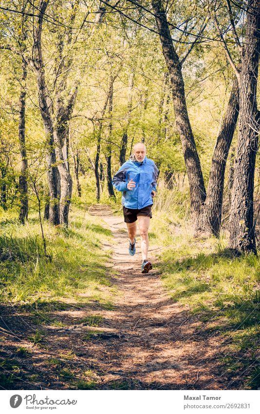 Senior Mann beim Laufen im Wald Lifestyle Glück Freizeit & Hobby Sommer Sport Joggen Mensch Erwachsene Natur Baum Park alt Fitness blau 60s Aktion Kaukasier