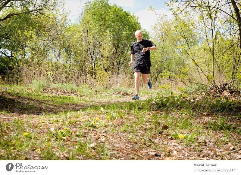 Senior Mann beim Laufen im Wald Lifestyle Glück Freizeit & Hobby Sommer Sport Joggen Mensch Erwachsene Natur Park alt beobachten Fitness 60s Aktion Kaukasier