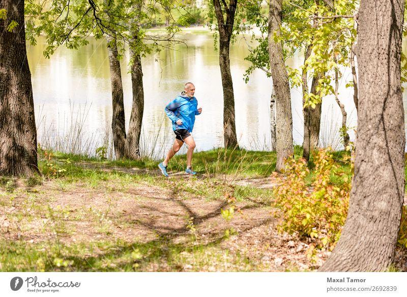 Senior Mann beim Laufen im Wald Lifestyle Glück Freizeit & Hobby Sommer Sport Joggen Mensch Erwachsene Natur Park See Fluss alt Fitness 60s Aktion Kaukasier