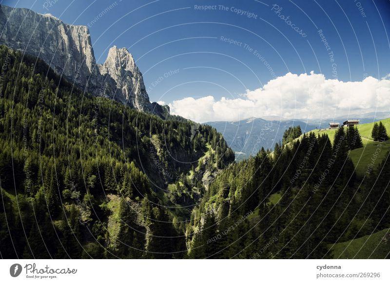 Berg und Tal Himmel Natur Ferien & Urlaub & Reisen Sommer ruhig Wald Erholung Ferne Umwelt Landschaft Berge u. Gebirge Freiheit träumen Horizont wandern Ausflug