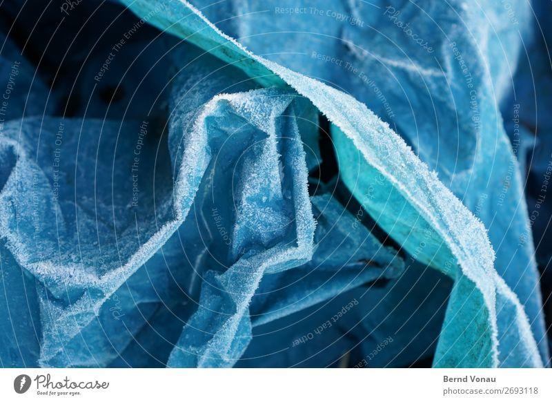 raureif Kunststoff kalt Müll Müllsack entsorgen Winter blau Faltenwurf Plastiktüte abstrakt Farbfoto Außenaufnahme Nahaufnahme Menschenleer Tag