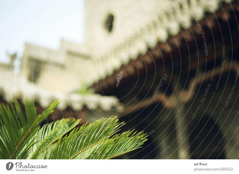 Palast. Himmel alt Pflanze Blatt Haus Wand Architektur Mauer Park Sträucher Sicherheit Bauwerk Dorf historisch Burg oder Schloss Balkon