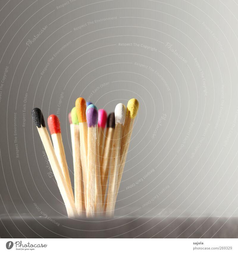 ein strauss streichhhölzer Holz stehen nah Teamwork Zusammenhalt Streichholz mehrfarbig Ursprung Vielfältig Verschiedenheit Integration multikulturell unbenutzt