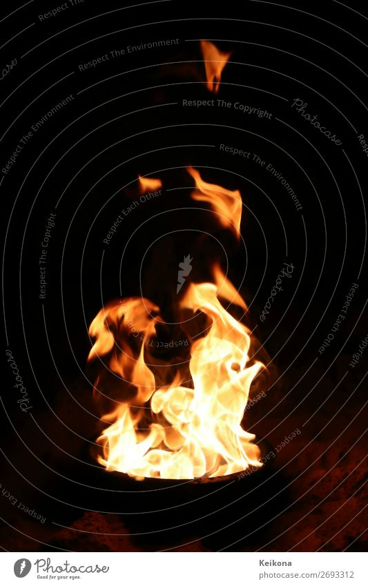 Burning fire. Jagd Tourismus Ausflug Abenteuer Camping Feste & Feiern Oktoberfest Silvester u. Neujahr Kunst Zirkus Show Umwelt Urelemente Feuer Grill