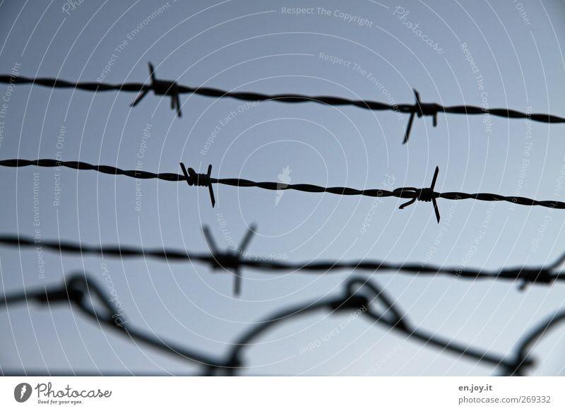 Stachel.Draht.Zaun blau Einsamkeit schwarz Traurigkeit Angst gefährlich Sicherheit trist bedrohlich Spitze Schutz Ende Gewalt Todesangst Stahl